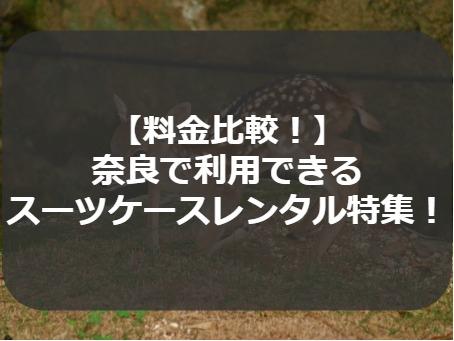 【料金比較!】 奈良で利用できる スーツケースレンタル特集!