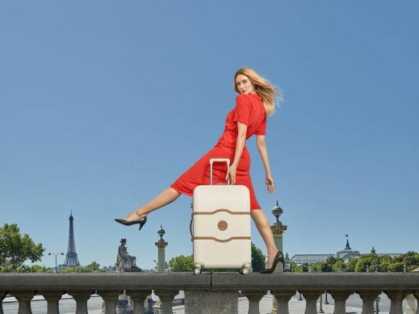 デルセーのスーツケースで旅行