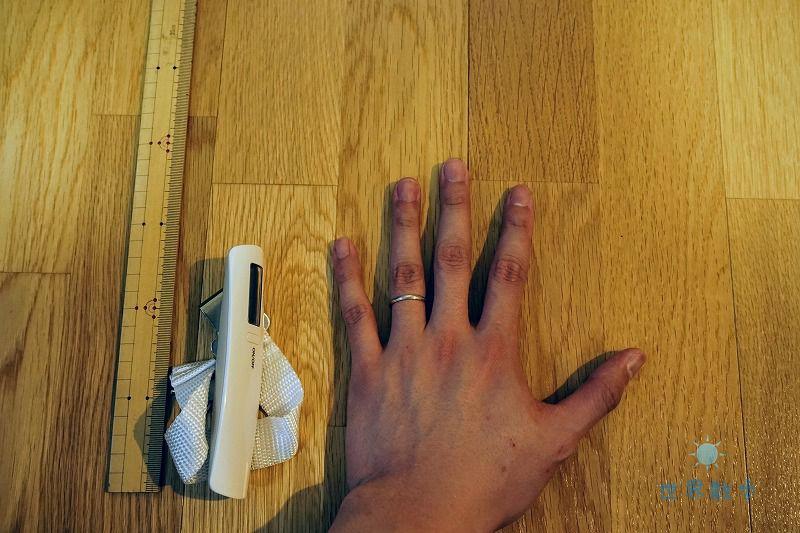 ドリテックラゲッジスケールのサイズ